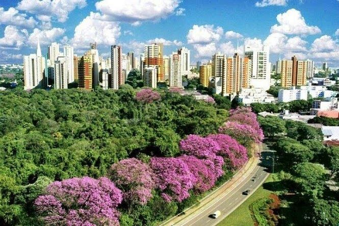 What Is The Best City to Live in Brazil?