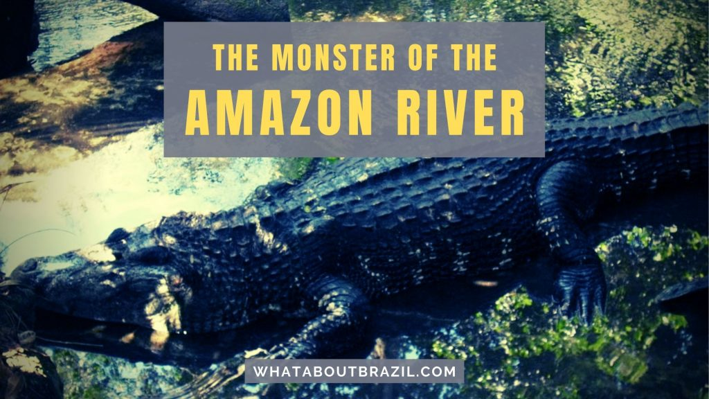 Black Caiman: The Monster Of The Amazon River