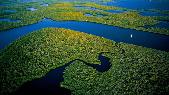 Where Is The Amazon In Brazil?